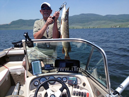 Colorado Northern Pike caught with iTroll!